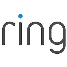 Logo – RING – In-Company Dutch Course in Amsterdam
